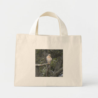 FLORIDA FALCON Tote Bag