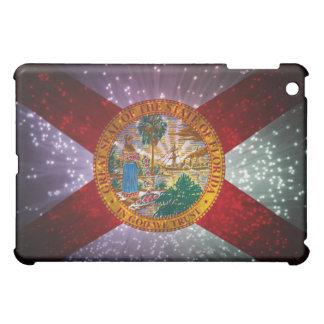 Florida Flag Firework iPad Mini Cases