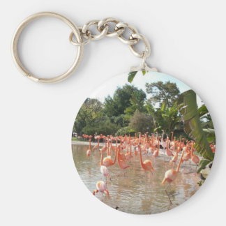 Florida Flamingos Key Ring