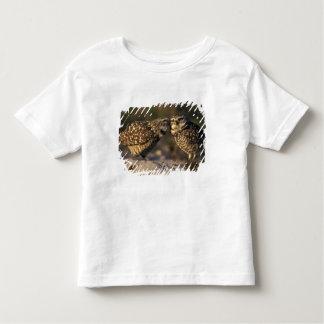 Florida, Fort Myers. Burrowing Owl pair bonding Toddler T-Shirt