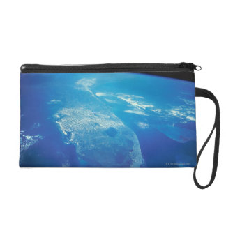 Florida from Space 2 Wristlet