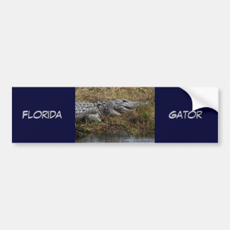 Florida Gator Bumper Sticker