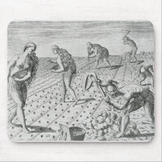 Florida Indians planting maize Mouse Pad