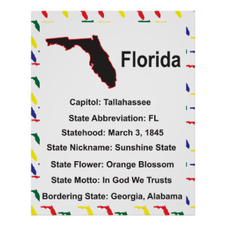 Florida Information Educational Poster