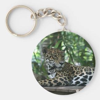 Florida Jaguar looking back lying down Key Ring