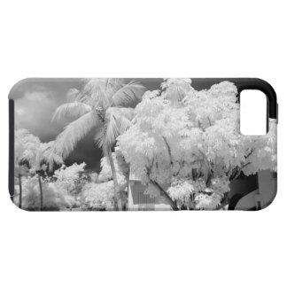 Florida Keys house and its palm trees, USA. 2 iPhone 5 Cover