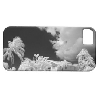 Florida Keys house and its palm trees, USA. Case For The iPhone 5