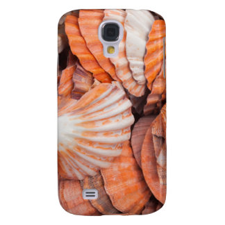 Florida Keys, Key West, seashells Galaxy S4 Case