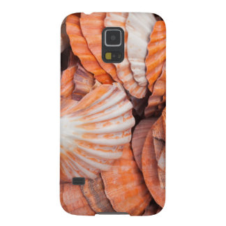 Florida Keys, Key West, seashells Galaxy S5 Covers