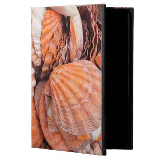 Florida Keys, Key West, seashells iPad Air Case