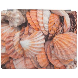 Florida Keys, Key West, seashells iPad Cover