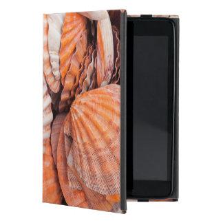 Florida Keys, Key West, seashells iPad Mini Covers