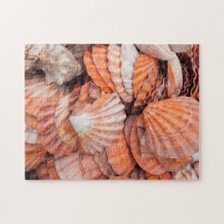 Florida Keys, Key West, seashells Jigsaw Puzzle