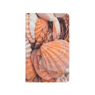 Florida Keys, Key West, seashells Journal