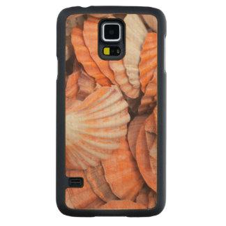 Florida Keys, Key West, seashells Maple Galaxy S5 Case