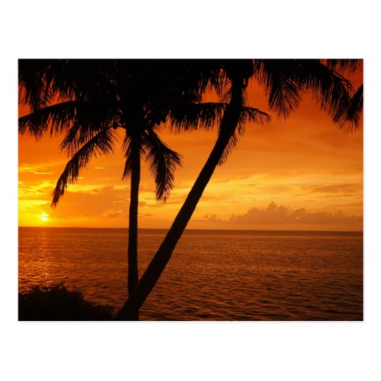 Florida Key's Sunset Postcard