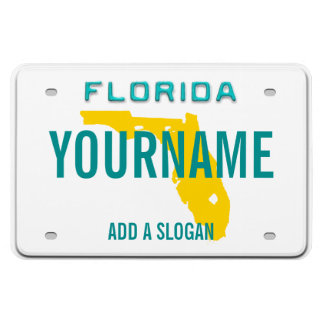 Florida License Plate (personalized) Rectangle Magnets