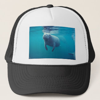 Florida Manatee Trucker Hat