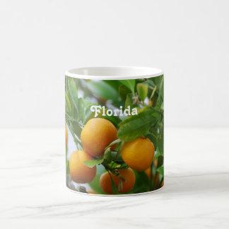Florida Oranges Mugs