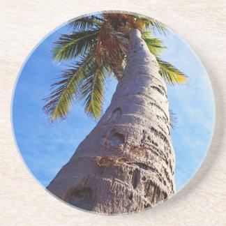 Florida Palm Tree Beverage Coasters