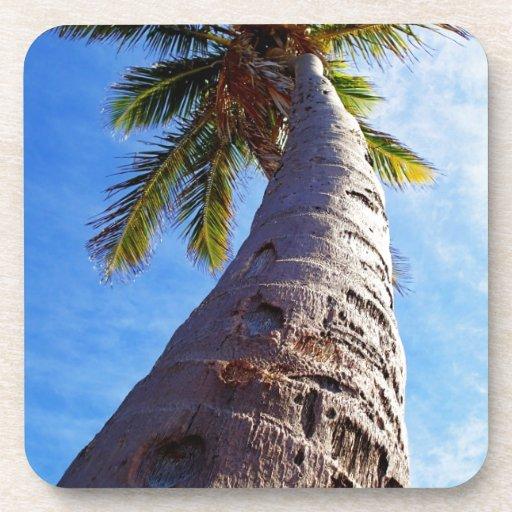 Florida Palm Tree Drink Coaster