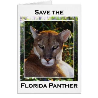 Florida Panther Card