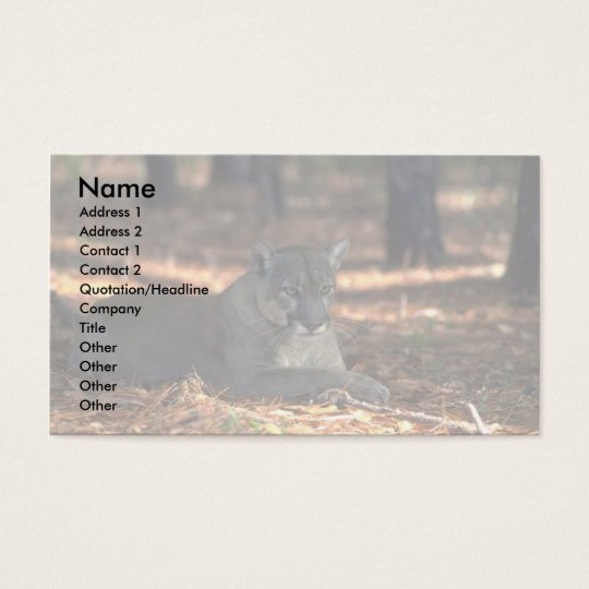 "Florida """"""""Panther"""""""" (Cougar) lying down Business Card"