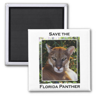 Florida Panther Square Magnet