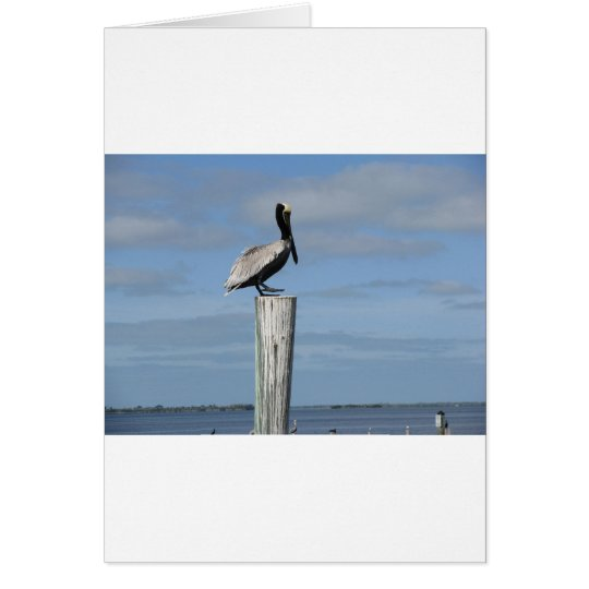 Florida Pelican on a Post at the Dock Card