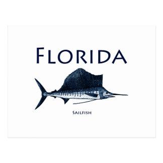 Florida Sailfish Postcard