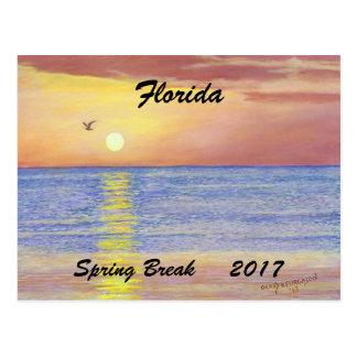 """FLORIDA SEAGULL SPRIING BREAK 2017 POSTCARD"" POSTCARD"