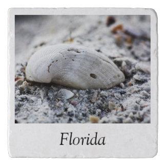 Florida Shell Trivet
