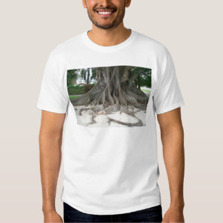 Florida State Champion Mysore Fig Tree Roots Shirt