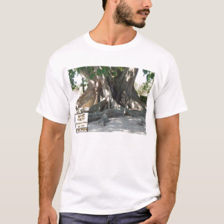 Florida State Champion Mysore Fig Tree With Sign T-Shirt