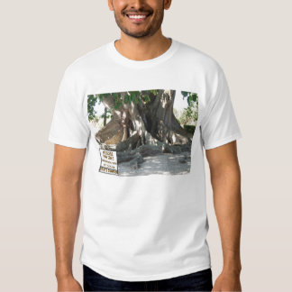 Florida State Champion Mysore Fig Tree With Sign Tshirts