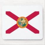Florida State Flag Design