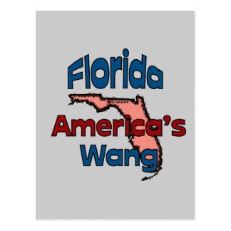 Florida State Motto America s Wang Post Cards