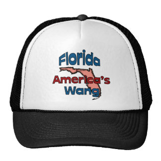 Florida State Motto ~ America's Wang Hat