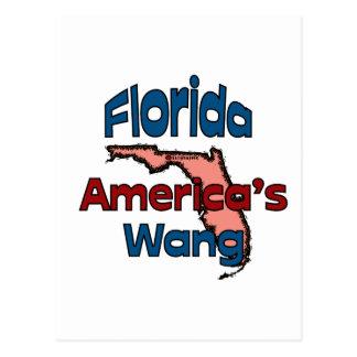Florida State Motto ~ America's Wang Postcard