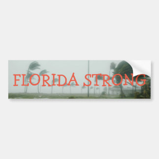 Florida Strong Bumper Sticker