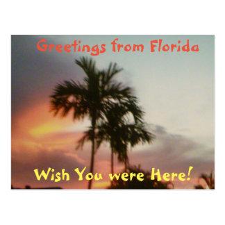 "FLORIDA SUN DOWN ""WISH YOU WERE HERE"" POST CARD"