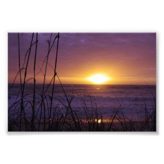 Florida Sunrise Photo Print