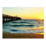 Florida Sunrise Postcard