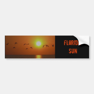 Florida Sunset with Gulls bumper sticker