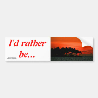 Florida sunset with palm trees bumper sticker