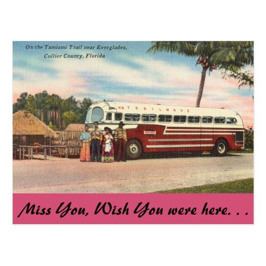 Florida, Tamiami Trail, Everglades Postcard