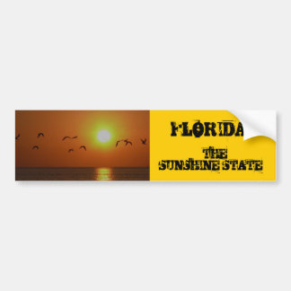 FLORIDA!, The Sunshine State, birds fling over Gul Bumper Sticker