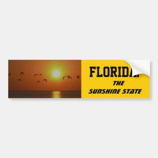 FLORIDA! The Sunshine State, birds over the Gulf Car Bumper Sticker