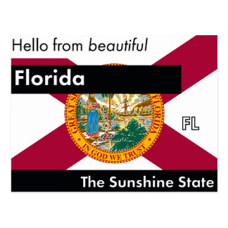 Florida The Sunshine State Postcard