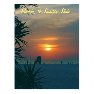 Florida, the Sunshine State Postcard
